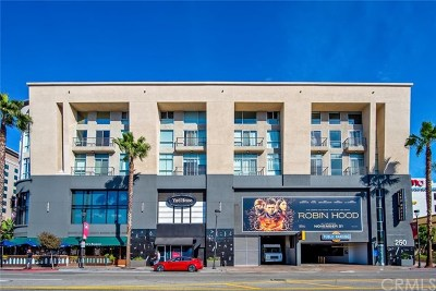 Rental For Rent: 250 N First Street #329