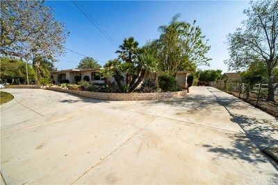 Norco Single Family Home For Sale: 1252 1st