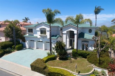 Laguna Niguel Single Family Home For Auction: 13 San Simeon