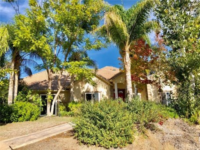 Lake Elsinore Single Family Home For Sale: 27297 Lindell Road