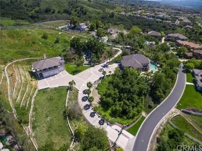 Coto De Caza Single Family Home For Sale: 12 Oak Canyon