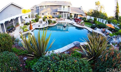 Encinitas Single Family Home For Sale: 514 Dusty Acres Court