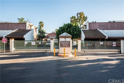 Anaheim Condo/Townhouse For Sale: 1008 S Citron Street #12