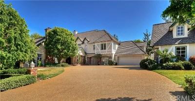 Coto De Caza Single Family Home For Sale: 31132 Via Consuelo