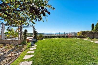 Newport Coast CA Single Family Home For Sale: $3,995,000