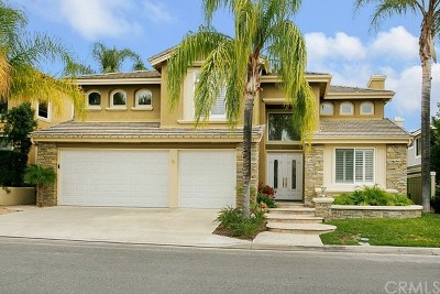 Rancho Santa Margarita CA Single Family Home For Sale: $990,000