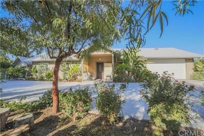 Hemet Single Family Home For Sale: 684 El Dorado Lane