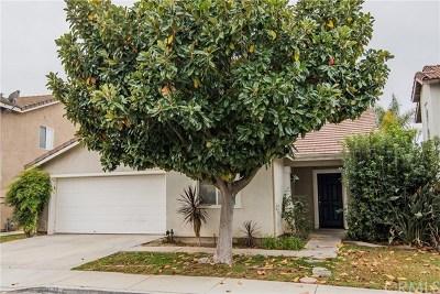 Corona Single Family Home For Sale: 924 Eaglesnest Drive
