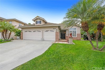 San Clemente Single Family Home For Sale: 1658 Via Tulipan