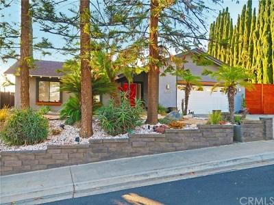 Mission Viejo Single Family Home For Sale: 24971 Sebastian Lane