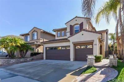 Laguna Niguel Single Family Home For Sale: 25022 Footpath Lane