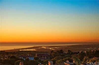 Newport Coast Rental For Rent: 14 Via Avoria