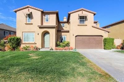Riverside Single Family Home For Sale: 16202 Skyridge Drive