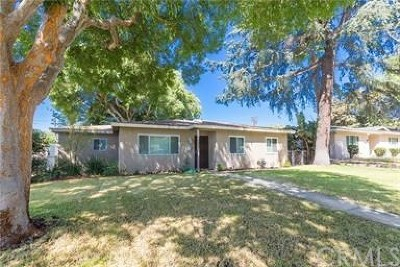 Upland Single Family Home For Sale: 1313 5th Avenue