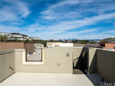 Dana Point  Condo/Townhouse For Sale: 2558 Doheny Way