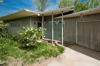 Fullerton Single Family Home For Sale: 1014 N Woods Avenue