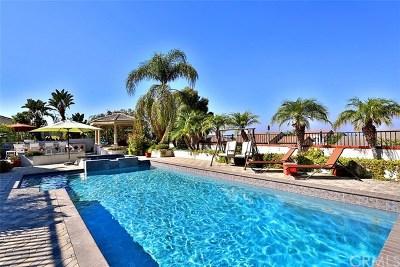 Corona Single Family Home For Sale: 1649 Paseo Vista Street
