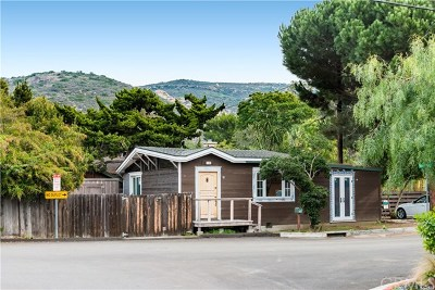 Laguna Beach Single Family Home For Sale: 130 Woodland Drive