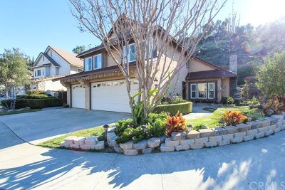 Orange Single Family Home For Sale: 431 S Mountain View Court