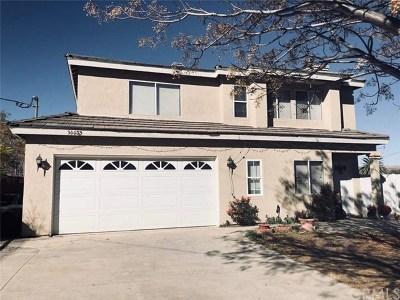 Lake Elsinore Single Family Home For Sale: 30085 McBurney Avenue