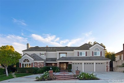 Laguna Hills Single Family Home For Sale: 27753 Hidden Trail Road