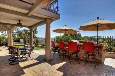 Mission Viejo Single Family Home For Sale: 22381 Pineglen
