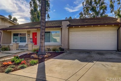 Mission Viejo Single Family Home For Sale: 26091 Via Remolino