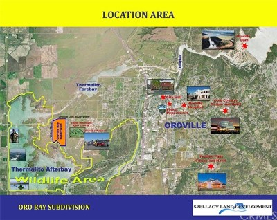 Oroville Residential Lots & Land For Sale: 3063 Oroville Dam Boulevard W