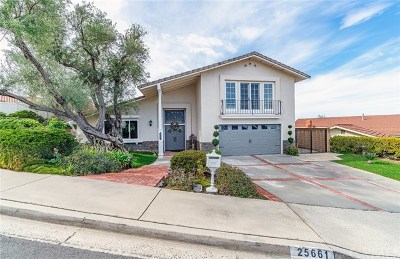 Mission Viejo Single Family Home For Sale: 25661 Via Viento