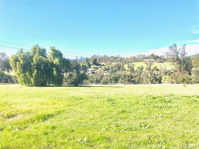 Fallbrook CA Residential Lots & Land For Sale: $635,000