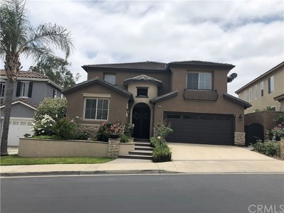 Placentia Single Family Home For Sale: 980 Pebble Beach Place