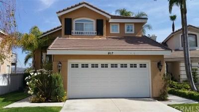 Anaheim Hills Single Family Home For Sale: 917 S Emanuele Circle
