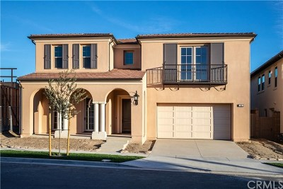 Irvine Single Family Home For Sale: 106 Paxton