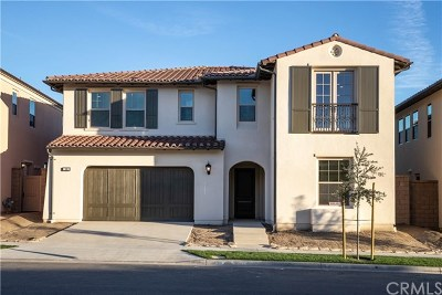 Irvine Single Family Home For Sale: 108 Paxton