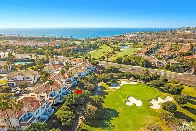 Dana Point Condo/Townhouse For Sale: 19 Wightman Court