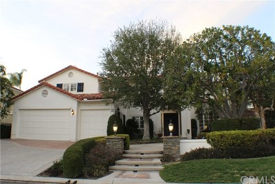 Coto de Caza Single Family Home For Sale: 21 Meadow Wood Drive