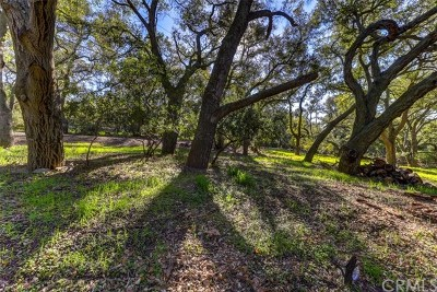 Trabuco Canyon Residential Lots & Land For Sale: 19411 Live Oak Canyon Road