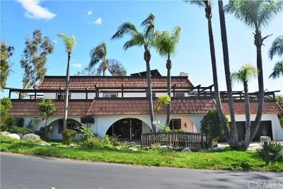 Yorba Linda Single Family Home For Sale: 19110 La Pradera