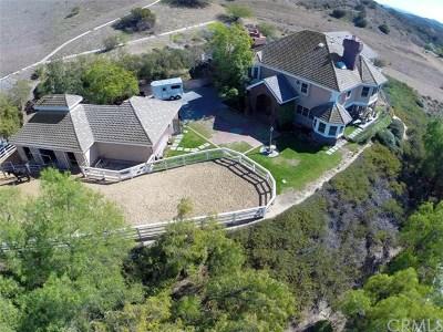Coto de Caza Single Family Home For Sale: 22 Palma Valley