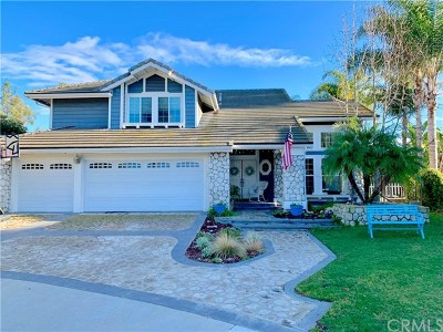 Laguna Niguel  Single Family Home For Sale: 25442 Burntwood