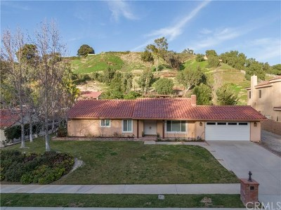 Laguna Hills Single Family Home For Sale: 27192 Lost Colt Drive