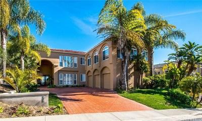 San Clemente Single Family Home For Sale: 21 Calle Ameno
