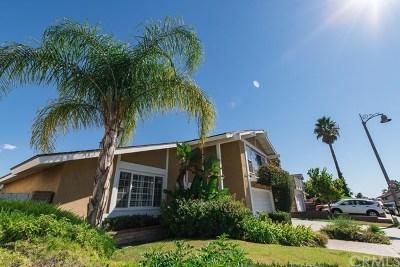 Mission Viejo Single Family Home For Sale: 24132 La Pala Lane