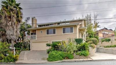San Clemente Single Family Home For Sale: 167 Avenida Florencia