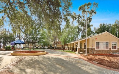La Habra Heights Single Family Home For Sale: 2400 Panchoy Place