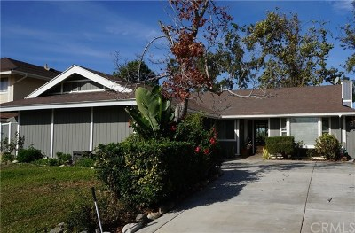 Laguna Niguel Single Family Home For Sale: 24491 Los Serranos Drive