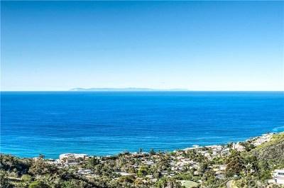 Laguna Niguel Single Family Home For Sale: 27 Le Conte