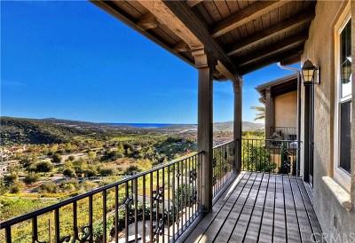 San Clemente Single Family Home For Sale: 24 Via Lucena