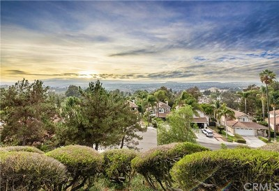 Laguna Niguel Single Family Home For Sale: 28411 La Plumosa