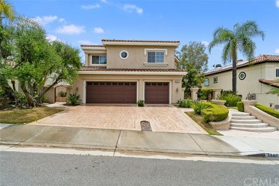 Orange County Single Family Home For Sale: 25671 Pacific Hills Drive
